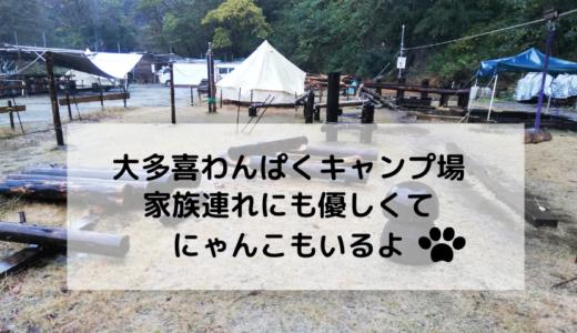 大多喜わんぱくキャンプ場なら雨でも安心|子連れに優しく猫もいる
